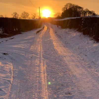 Sunrise And Snowy Lane